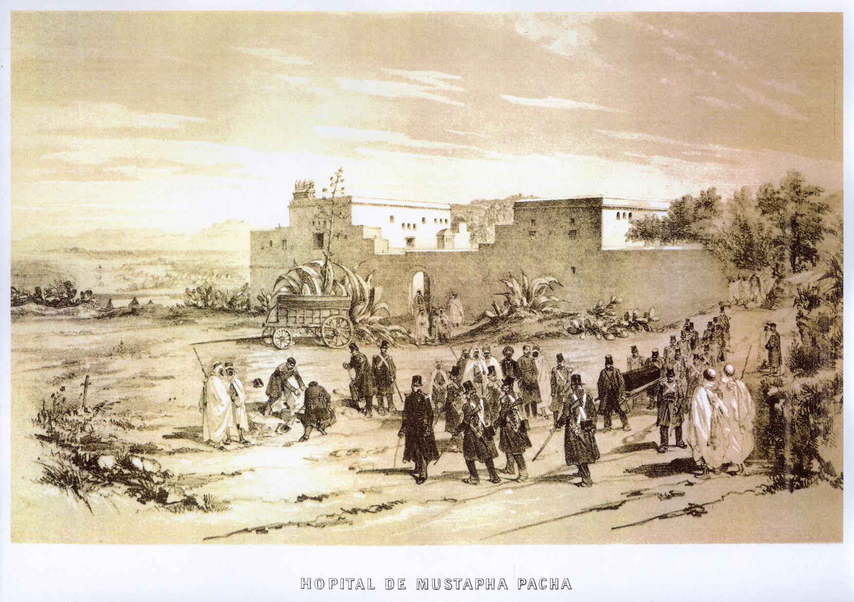 Bureaux De Bienfaisance : Les trésors du cdha annuaire administratif de l algérie pour